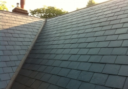 MW Pyle Roofing Ltd - Roofing in East Dean